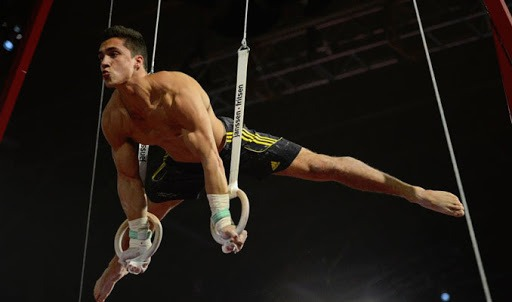 unnamed 1 - Beast Strength: Gymnastic Rings Training For Grapplers