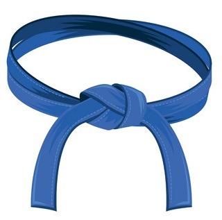 blue - Jiu-Jitsu Belts Explained: The Ultimate BJJ Belts Guide