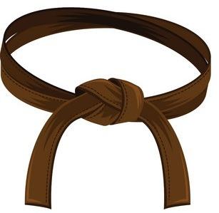 brown - Jiu-Jitsu Belts Explained: The Ultimate BJJ Belts Guide