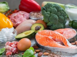 Best Diet For BJJ: Is Keto Good For Grapplers?