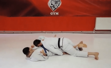 Dogbar BJj Kneebar Submission From Top