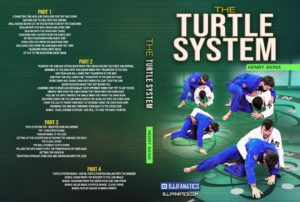 The-Turtle-System-by-Henry-Akins
