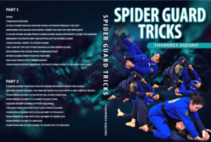 download 64 300x202 - The Best SPIDER GUARD DVD And Digital Instructionals