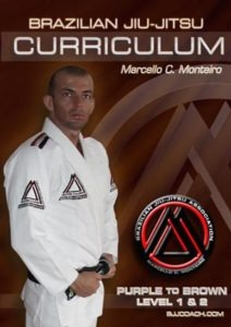 BJJ-CURRICULUM-PURPLE-TO-BROWN-LEVEL-1&2