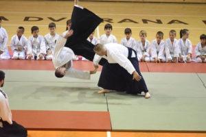Javna prezentacija aikido a u Novom Pazaru 4 300x200 - Why is Aikido Hated By BJJ And MMA Practitioners?