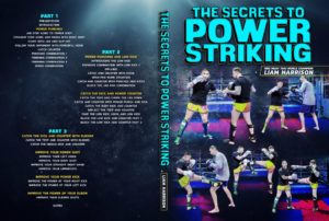 LiamHarrison Cover 1024x1024 300x202 - The Best Striking DVD Instructionals and Digital Releases