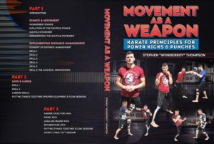 Stephen Wonderboy Thompson Cover 1024x1024 300x202 - The Best Striking DVD Instructionals and Digital Releases