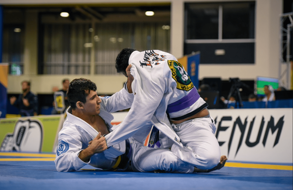 Untitled 1024x665 - BJJ Purple Belt Requirements And Curriculum