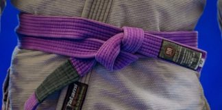 BJJ Purple Belt Requirements And curriculum