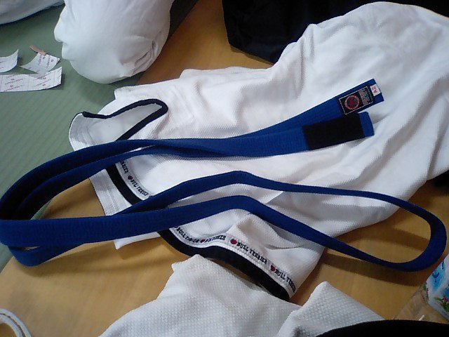 blue 1 - BJJ Blue Belt Requirements and Curriculum