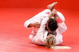 download - The Best 15 BJJ White Belt Tips