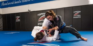 Making Sense Of The Most Important Jiu-Jitsu Positions