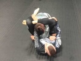 Do You Know The Dead Orchard Arm Bar Attack?