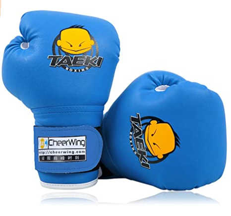 Cheerwing Youth Boxing Gloves