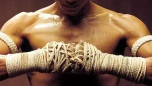 Kard Chuek Muay Thai Gloves