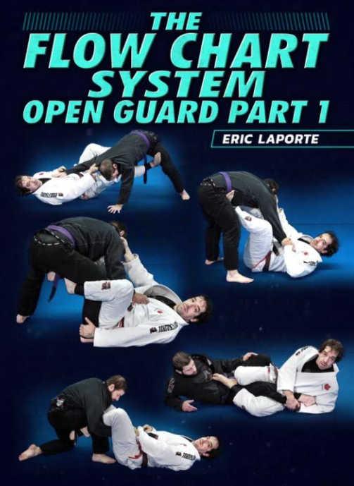 flowchart open guard eric laporte